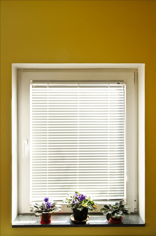 Window-Blinds-1390288.jpg